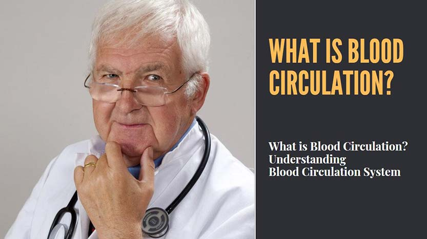 What is Blood Circulation?
