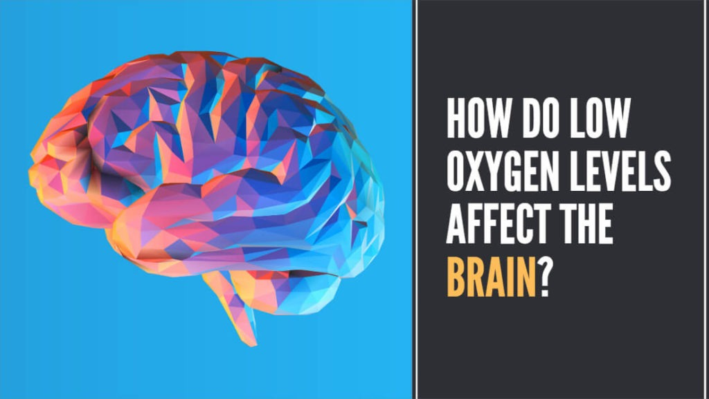 How do low oxygen levels affect the brain?